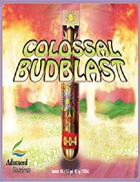 Advanced Nutrients Colossal Budblast