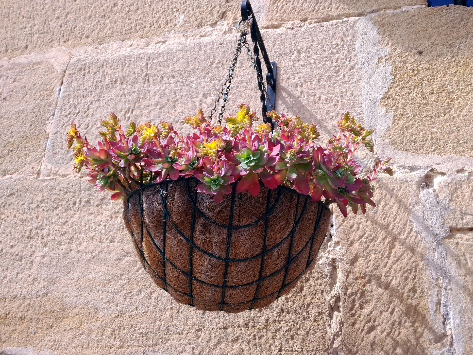 Zero-waste gardening trends UK.
