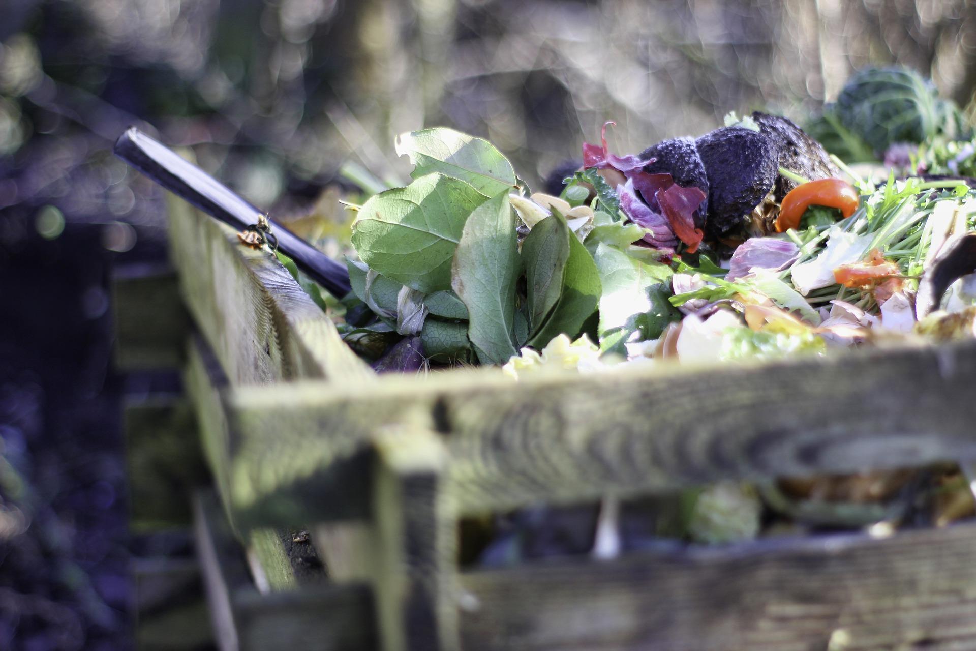 Composting green waste.