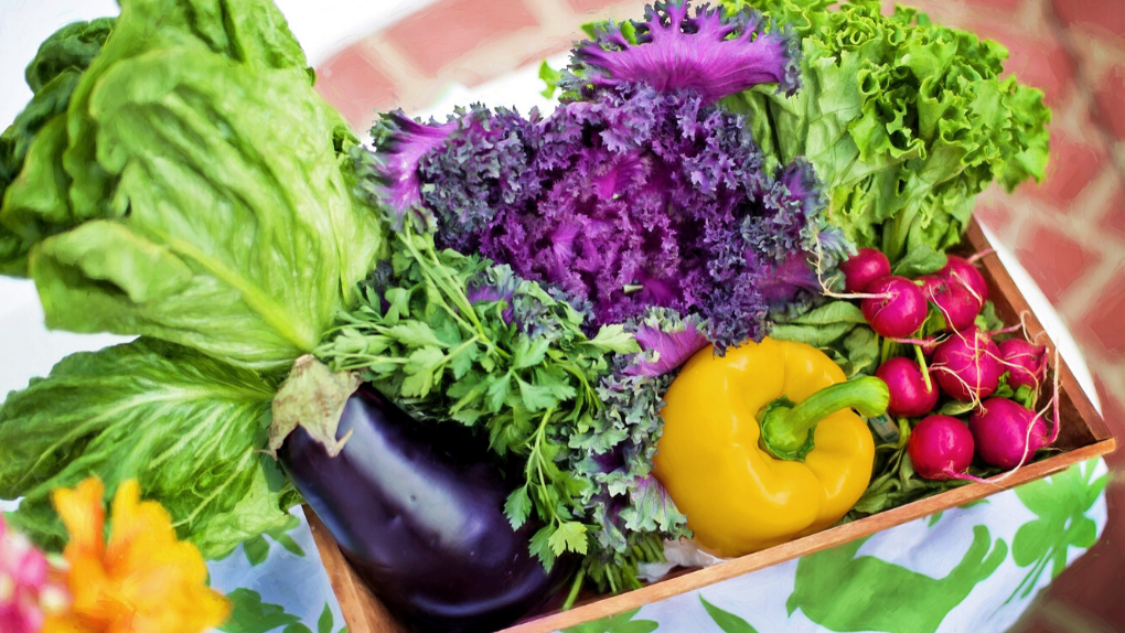 Immune Boosting Fruits And Veggies To Grow In UK