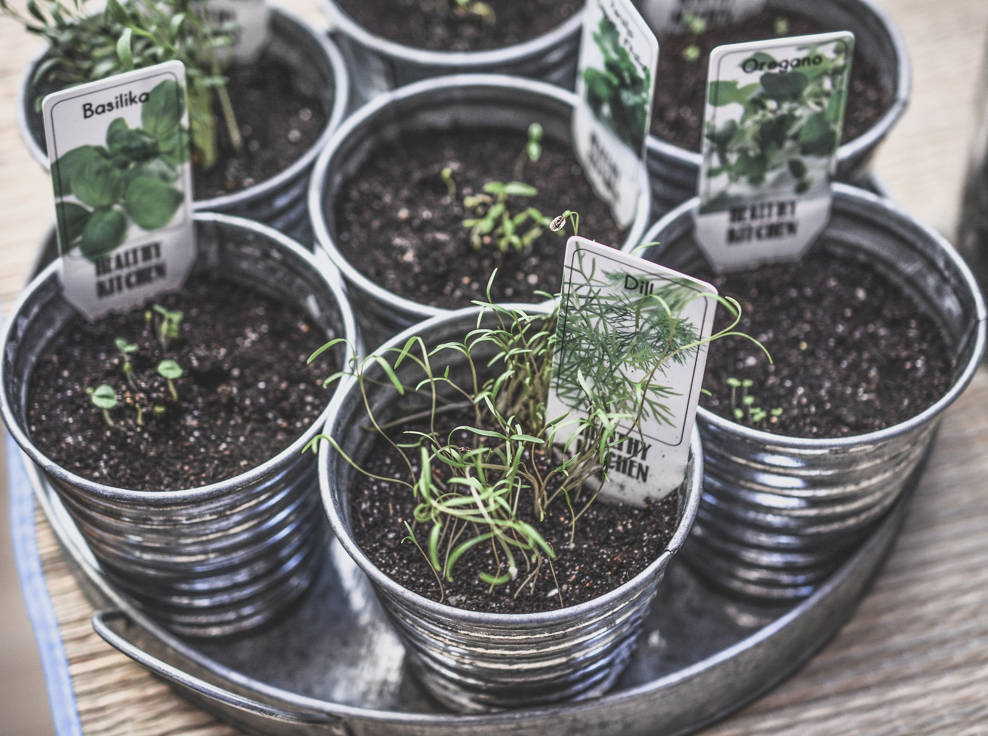Small herb containers