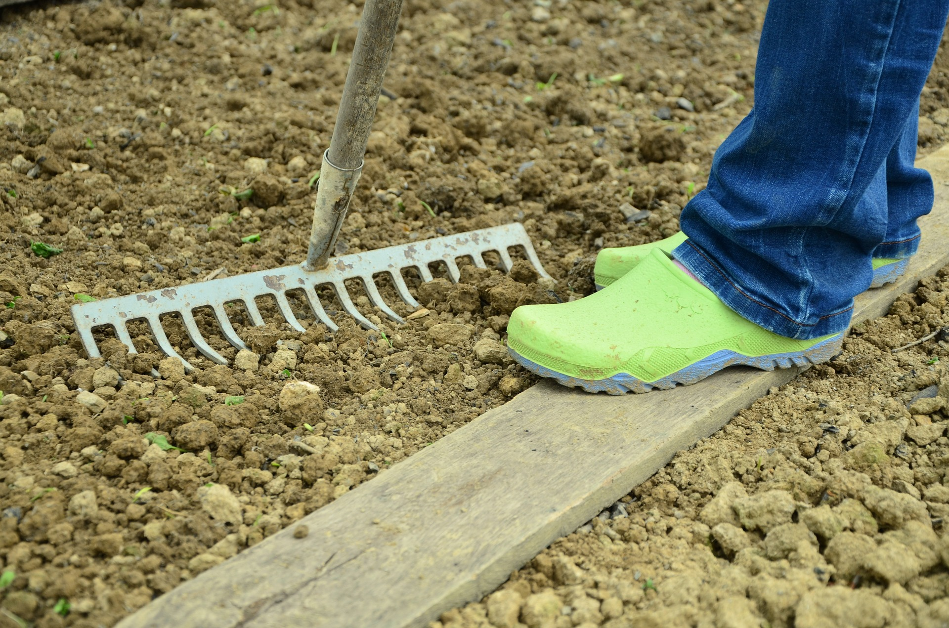 No-dig gardening is trending in UK in 2020