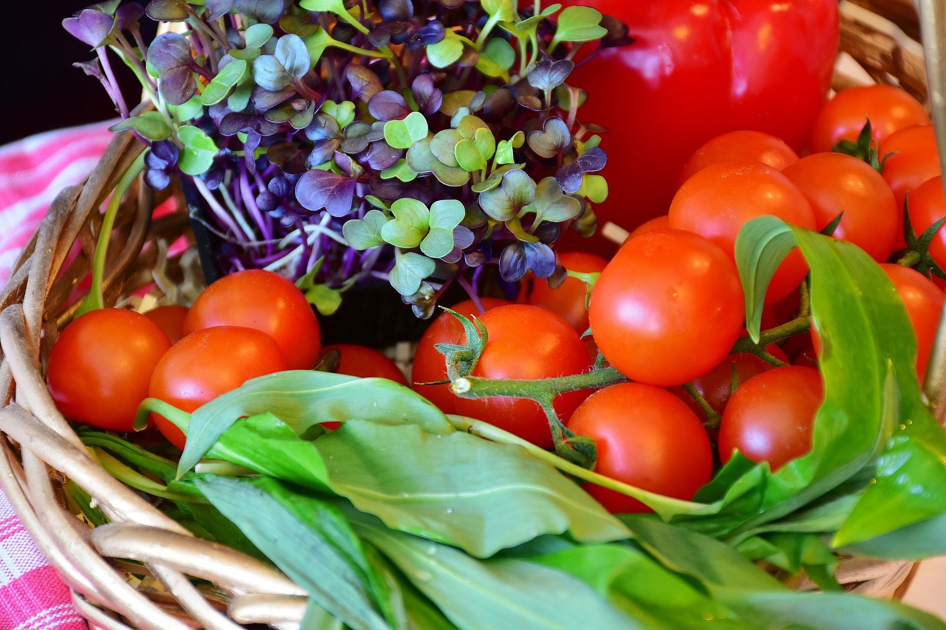 UK Garden Trends - Grow your own fruits and veggies in 2020