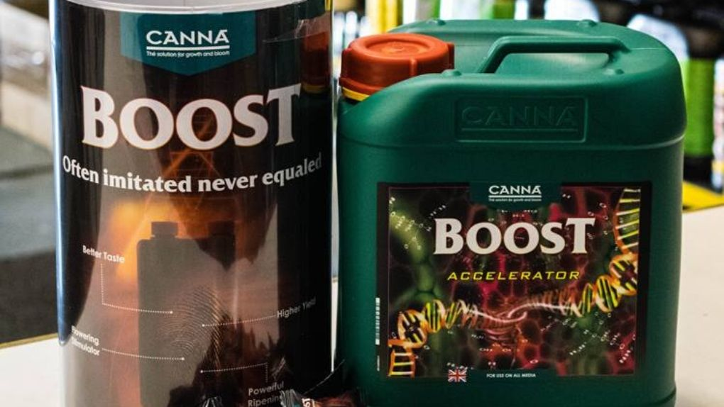 What's in Canna boost accelerator