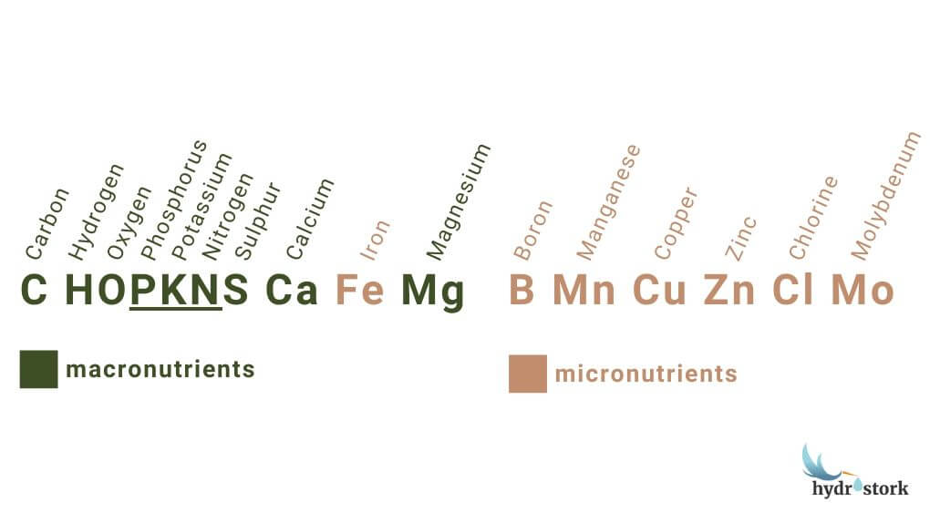 Primary macronutrients and micronutrients for plants.
