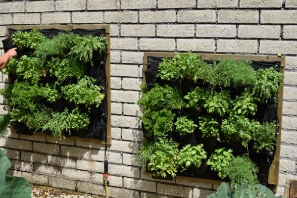 herb-vertical-garden